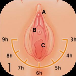 tu matrona masaje perineal 1